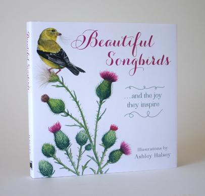 Songbirds_ahalsey_cvr