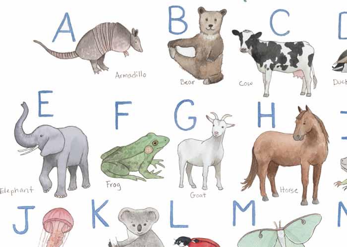 Animal Alphabet_web2