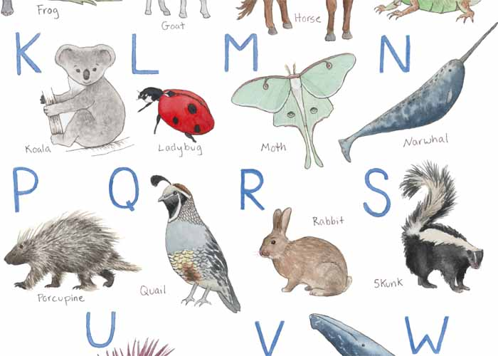 Animal Alphabet_web3