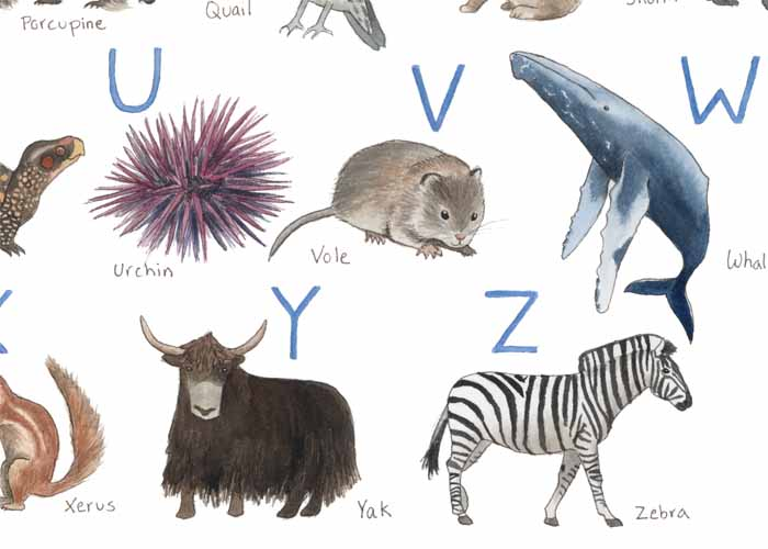 Animal Alphabet_web4