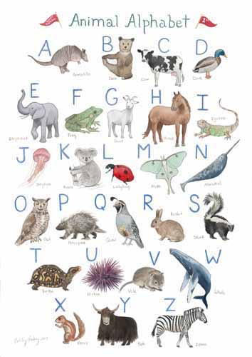Animal Alphabet_weba